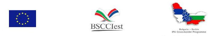 BSCCIest, Establishment of a Bulgarian-Serbian Chamber of Commerce and Industry